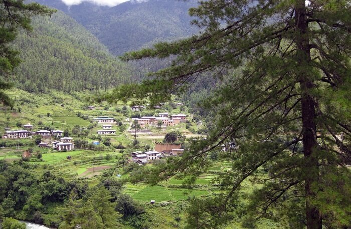 Best Time To Visit Phobjikha Valley