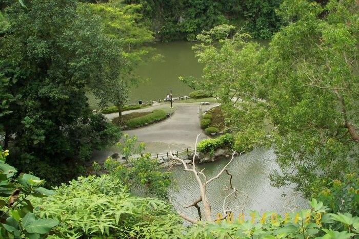 Bukit Batok Nature
