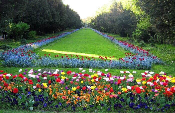 Cişmigiu Garden
