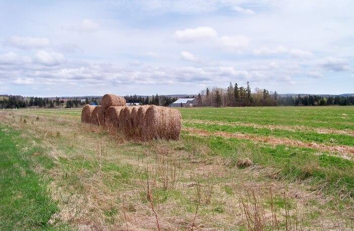 Confederation Trail in Canada