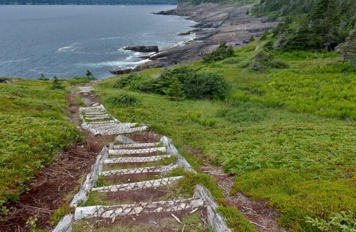 East Coast Trail view