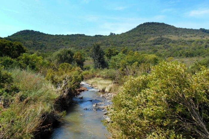 Faerie Glen Nature Reserve