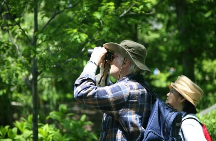 Go Birdwatching