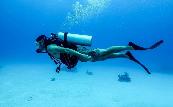 Go For Scuba Diving At Penguin Island