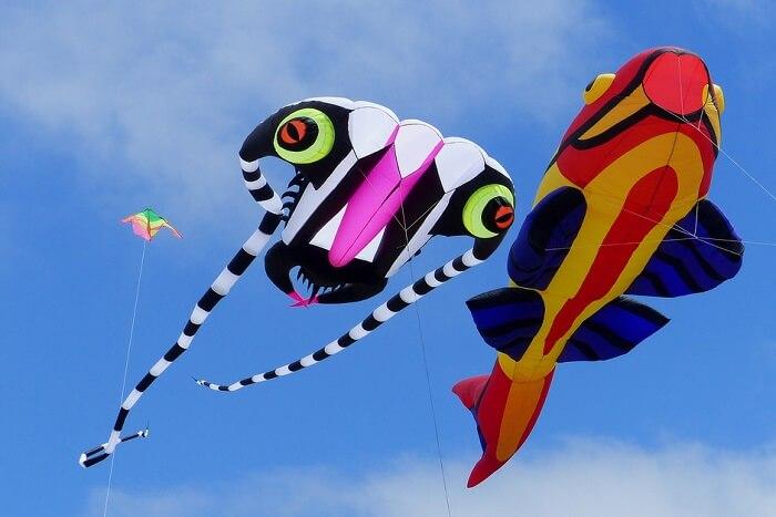 Jaipur Kite Festival 2019