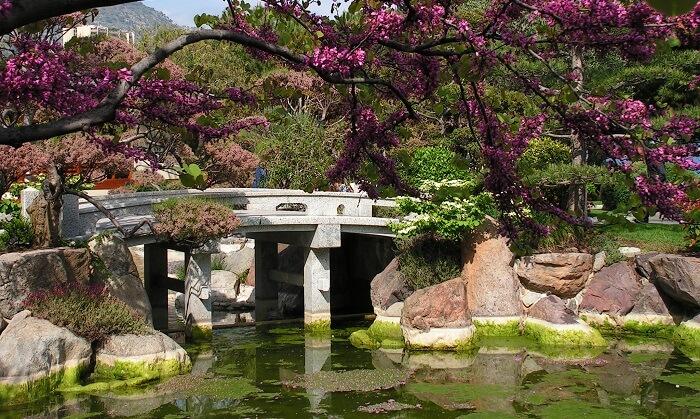 monaco japanese gardens