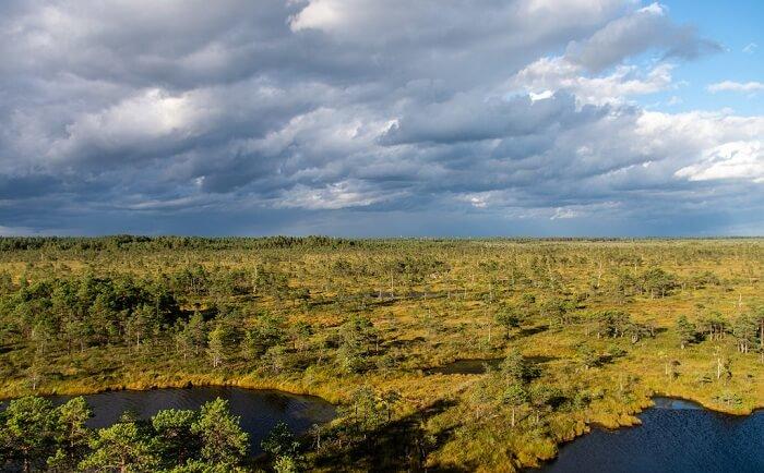 Gauja National Park2