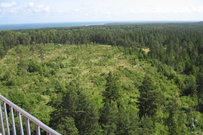 Kopu Nature Reserve