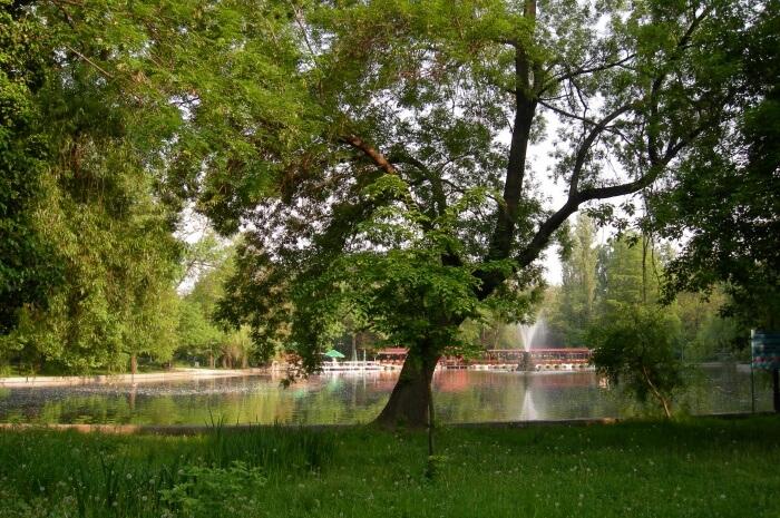 Lake Cismigiu