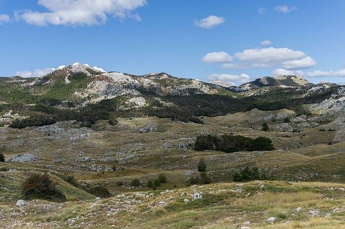 Lovćen National Park