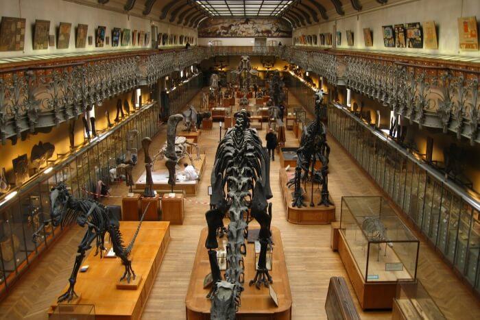 Museum Of Natural History Latvia