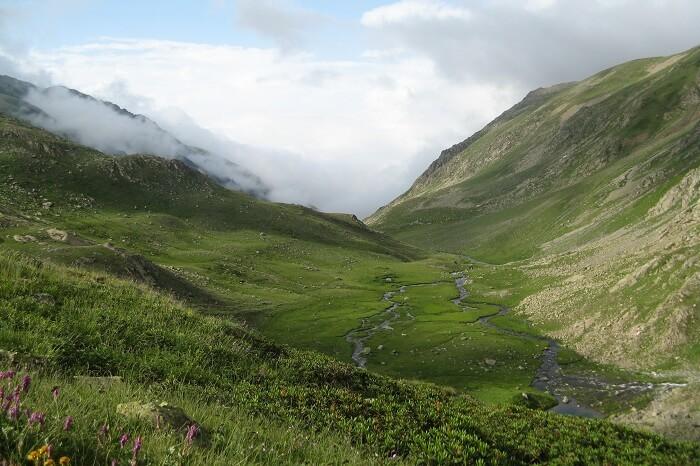 Outeniqua Nature Reserve