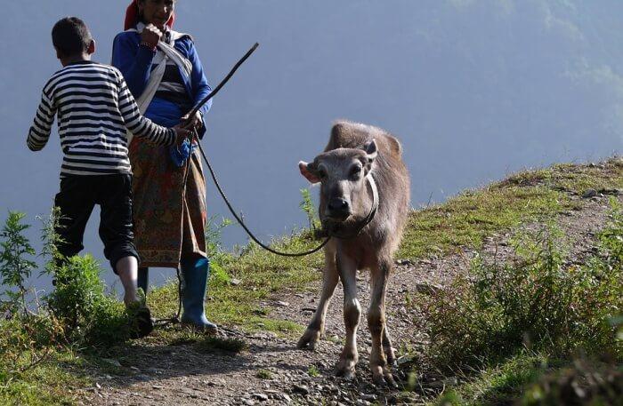 Rural lifestyle of Bhutan