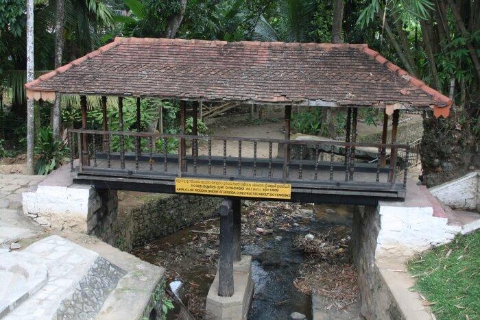 Spending Some Time Near the Bogoda Ancient Wooden Bridge