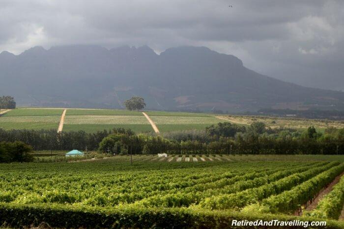 Stellenbosch Walking Tour