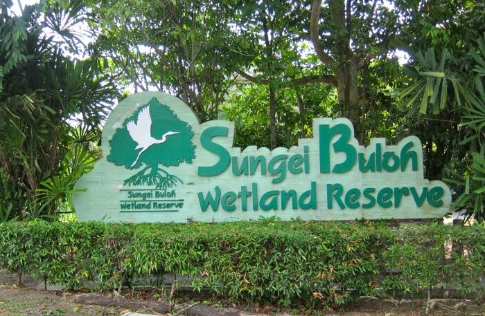 Sungei Buloh wildlife reserve