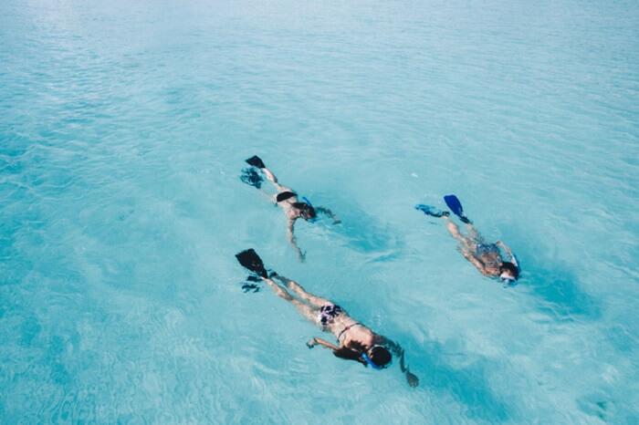 Swim in subpolar temperature