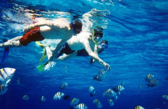 Take a Snorkeling Tour
