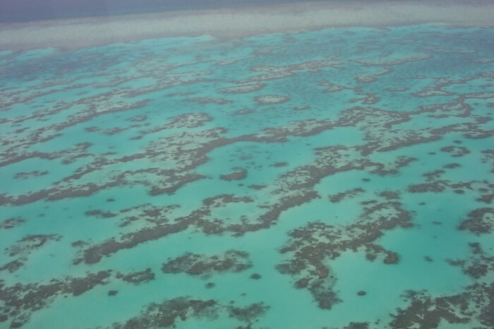 Water Activities at the Great Barrier Reef