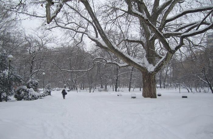 Winter Weather In Bucharest