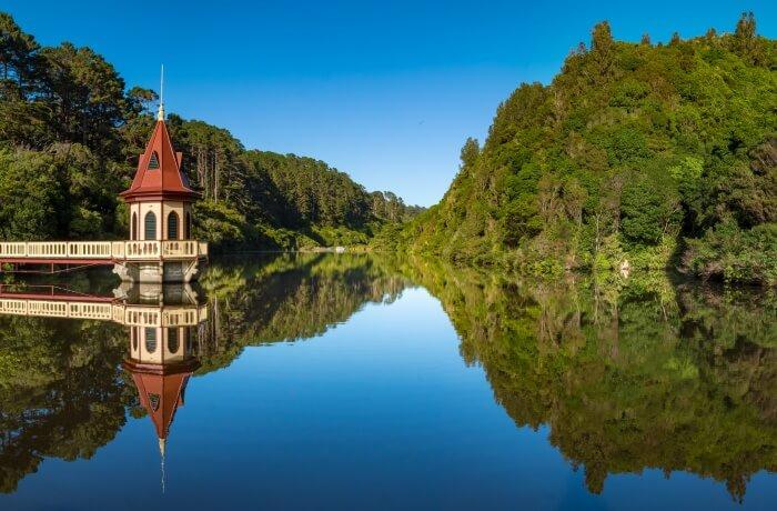 View of the Zealandia EcoSanctuary