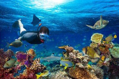 snorkeling underwater in monaco
