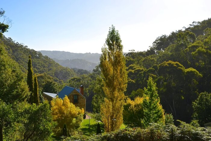 About Adelaide Hills