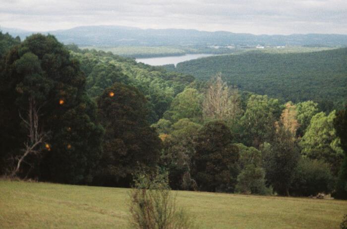About Dandenong Ranges National Park