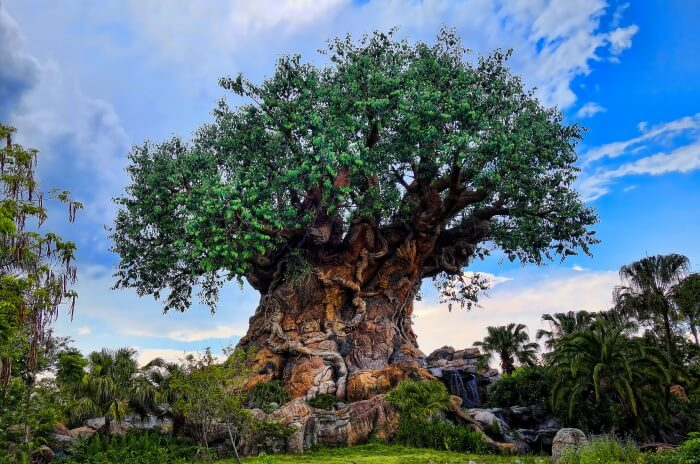 Best Time To Visit Walt Disney World Resort
