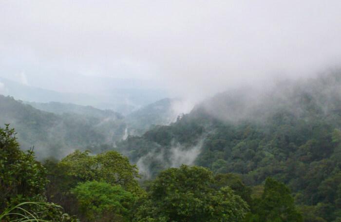 Brahmagiri Wildlife Sanctuary, Kodagu