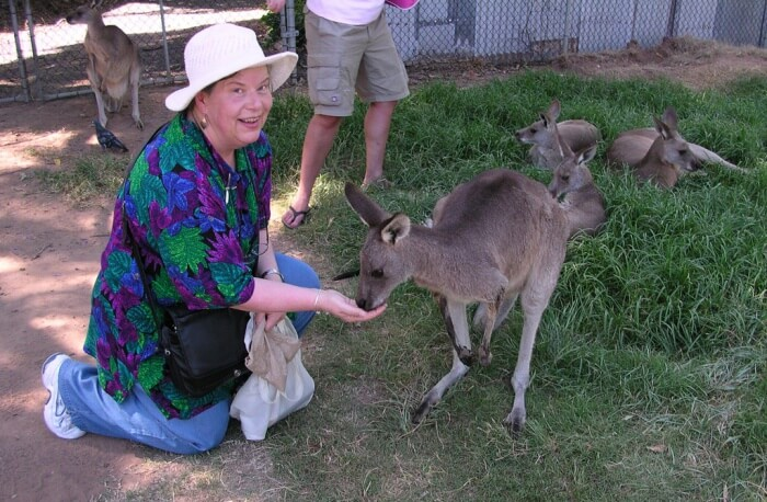 Queensland Make Time To See Kangaroos