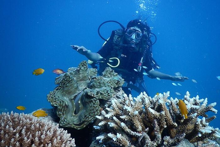 Scuba diving in Havelock