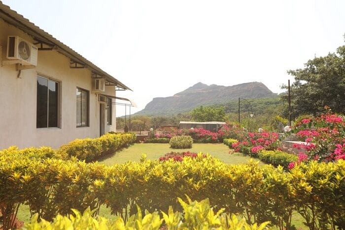 garden at cloud 9 resorts