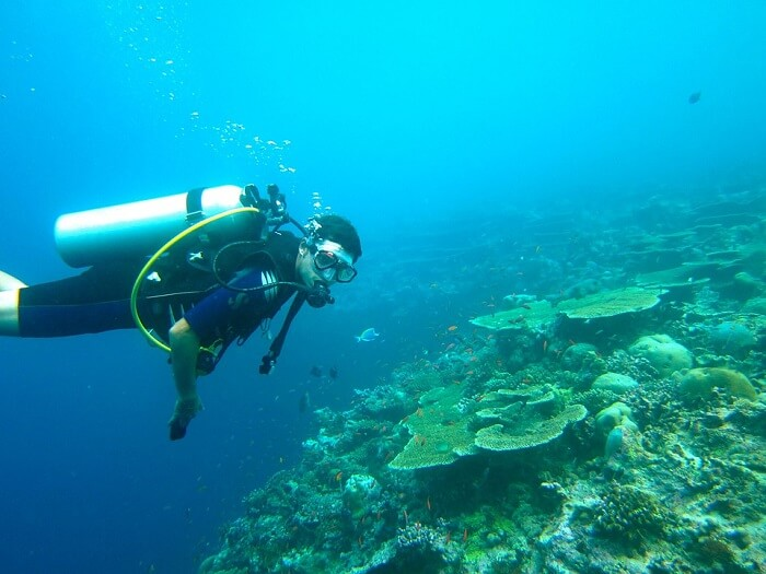 diver in maldives water