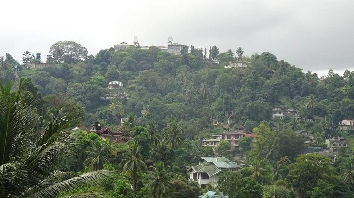 green nuwara eliya