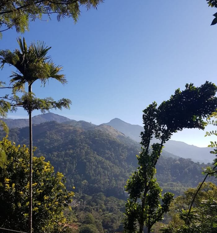the hilly areas of Thekkady