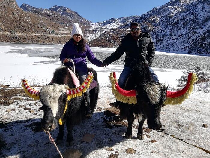yak ride