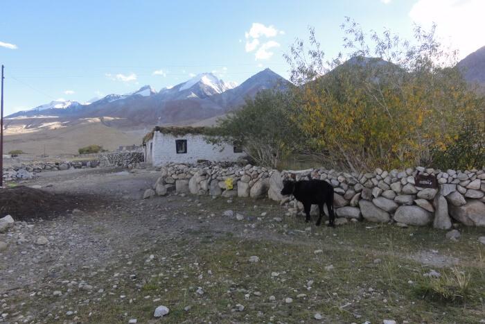 Merak Valley