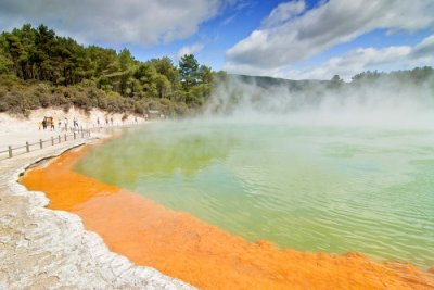 geotherrmal spring rotorua