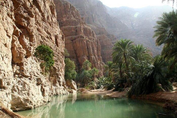 Wadi Shab Tours