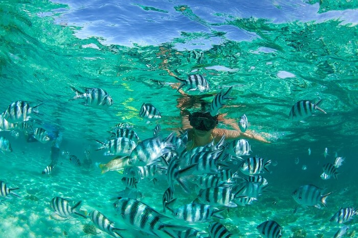 moka snorkeling