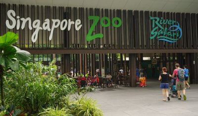 zoo in singapore